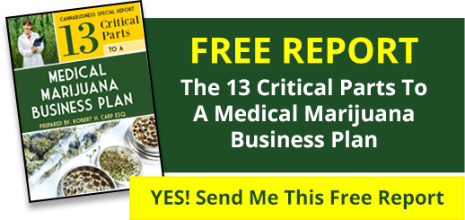 Free report - The 13 Critical Parts To A Medical Marijuana Business Plan