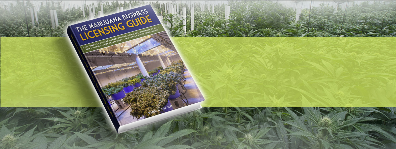 marijuana-business-licensing-guide-new